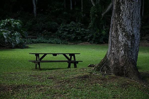 夏威夷公園一角.jpg