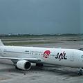 日航班機服務一級棒,成田機場設施也是一流的,很貼心很進步.