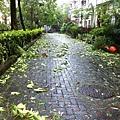 20130713-3.颱風過後,雖說不上滿目瘡痍,但也需要有人清理復舊。