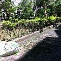 20130713-5.落葉雜物垃圾清掃打包,巷道灑掃乾淨,陽光露臉,菜鳥榮民是優良住戶典範。