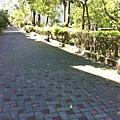 20130713-6.回歸家庭的菜鳥榮民,關心颱風,關心災情,最後就只能服務桑梓,清理巷道,也算小有成就啦。