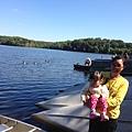 好大的公園,湖水碧綠,鴨子多。