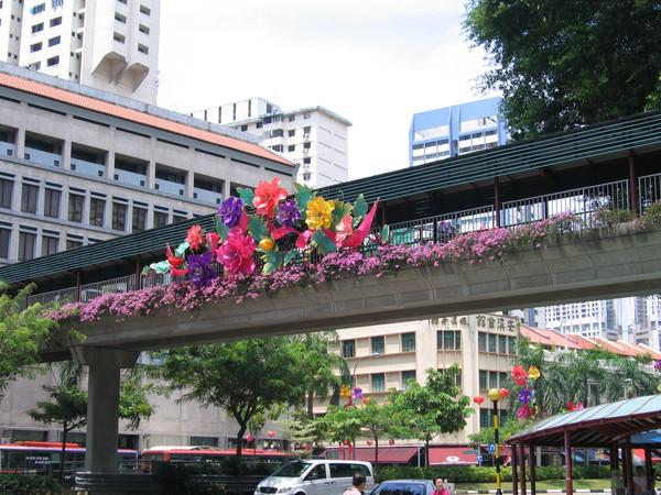 新加坡街頭花團錦簇,準備慶中秋了。