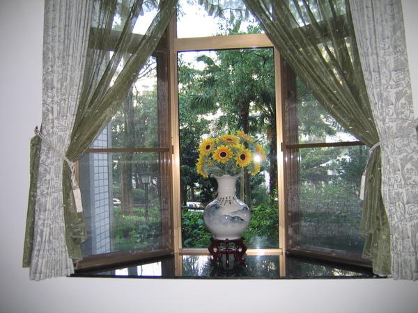 從客廳往外看去,窗帘外是綠意與鳥鳴。