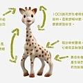 蘇菲長頸鹿解說