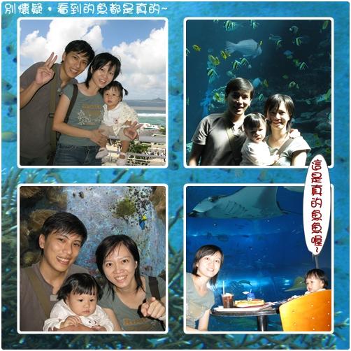 第二天美之海水族館之2.jpg