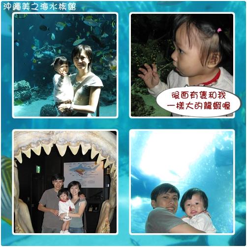 第二天美之海水族館之3.jpg