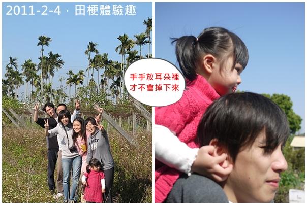 2y4m落羽松3.jpg