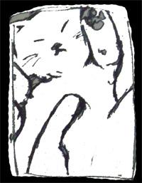 box cat-2