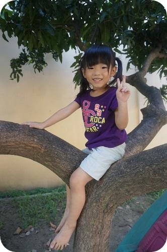 成長-挑戰爬樹 (2)