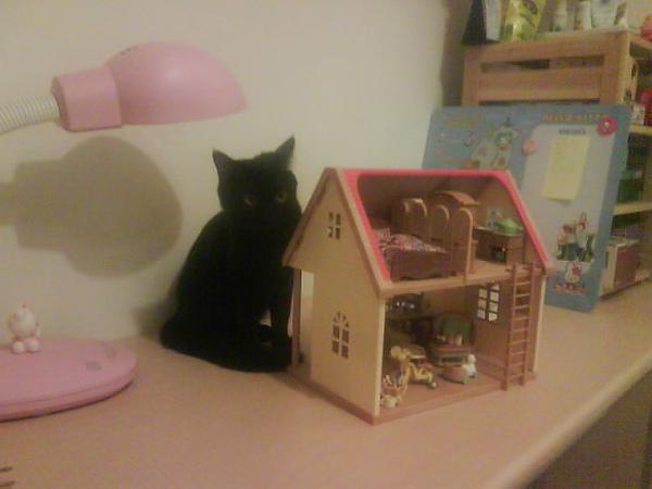 這是準備收起來的紅頂小屋