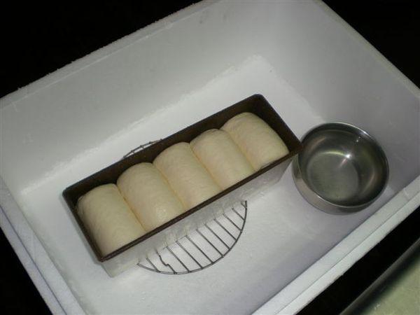 自製發酵箱