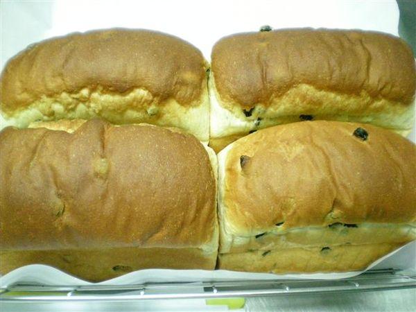 圓頂葡萄乾土司麵包