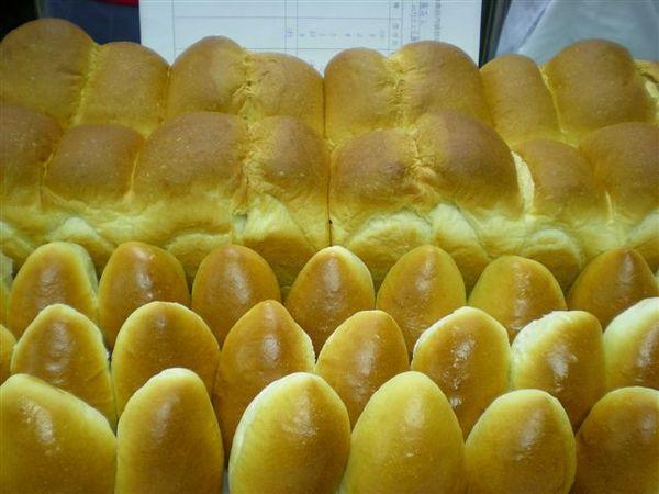 我做的山形白土司與橄欖形餐包.jpg