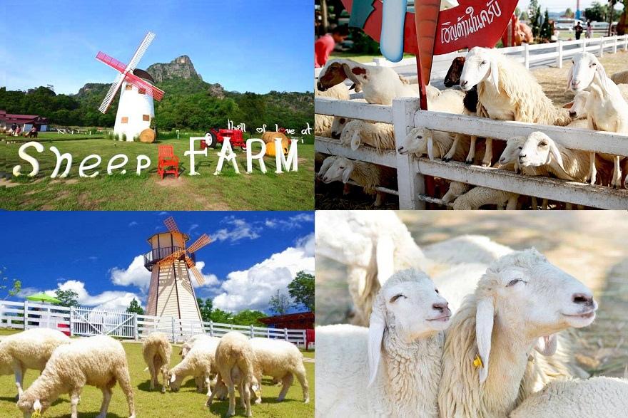 สวิสชีพฟาร์ม-Swiss-Sheep-Farm