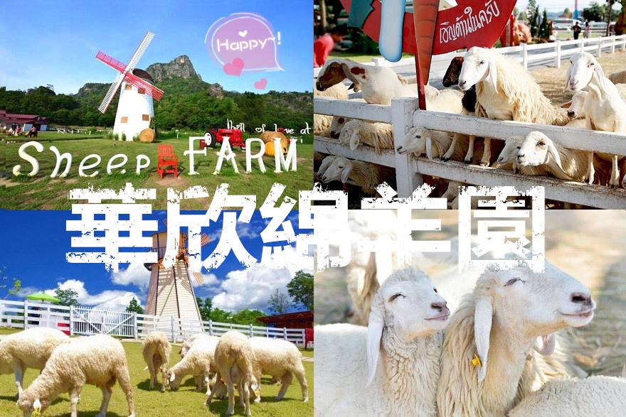 สวิสชีพฟาร์ม-Swiss-Sheep-Farm_副本