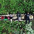 紅蓮花水上市場_180902_0065.jpg