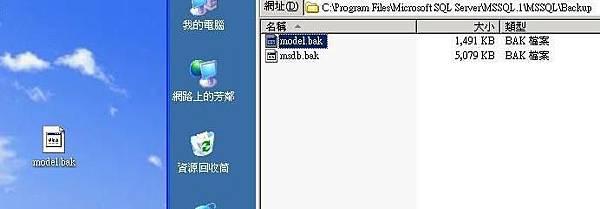 copy成功