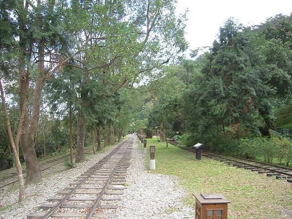 林田山林業文化園區。古老時候,運材的鐵路