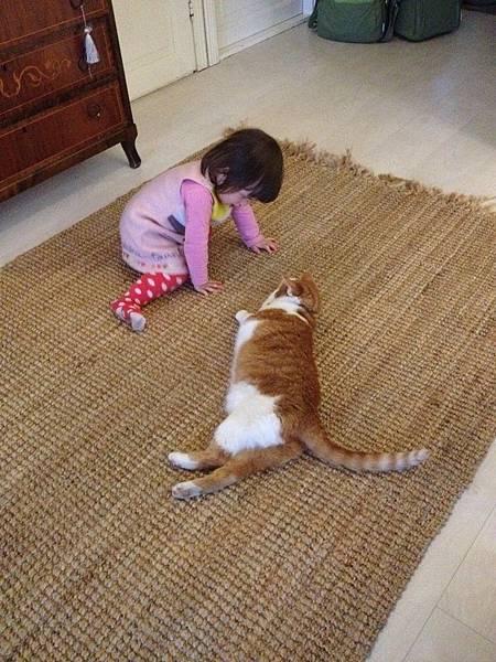 和貓咪玩得不亦樂乎