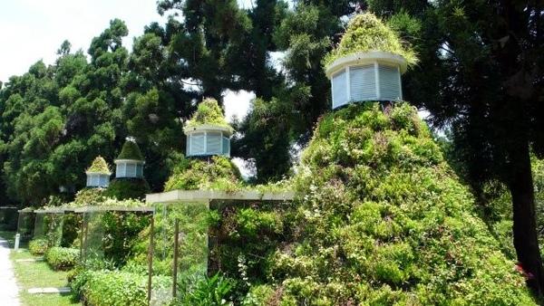 清境-22花園內別具特色的小屋.jpg