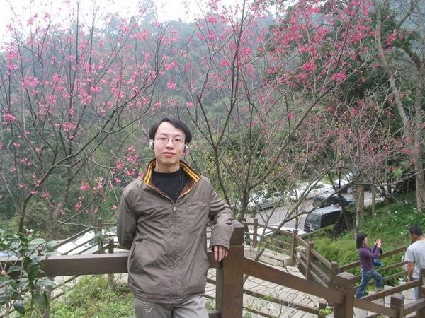 獅頭山-櫻花3.jpg