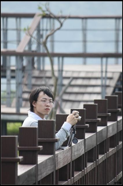 桐花北埔25.jpg