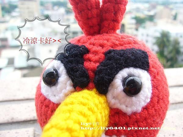 憤怒鳥1.JPG