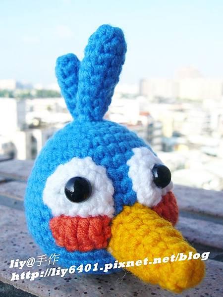 憤怒藍鳥1.JPG