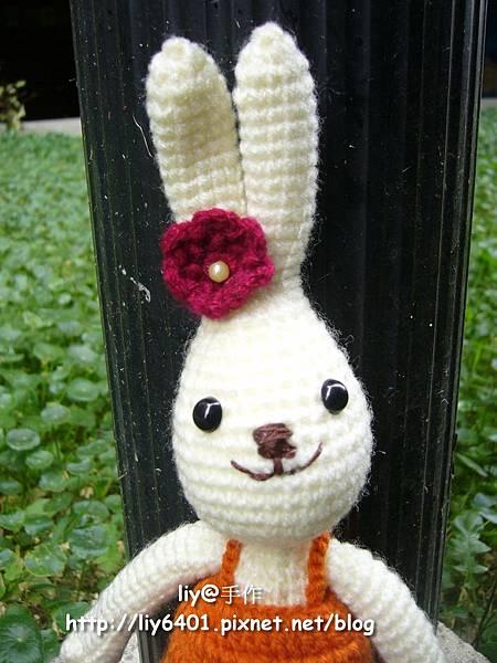 少女兔2.jpg