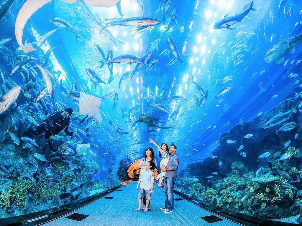 dubai aquarium.jpg