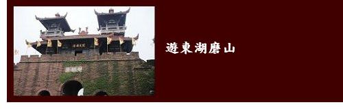 4中國a0006