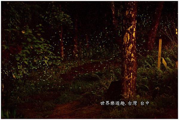 138香草House (24).jpg