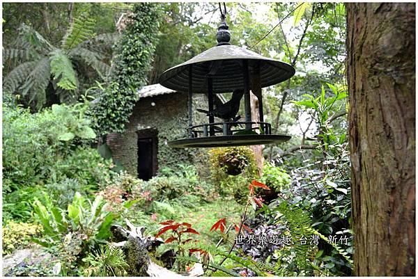 36A6號花園0034.jpg