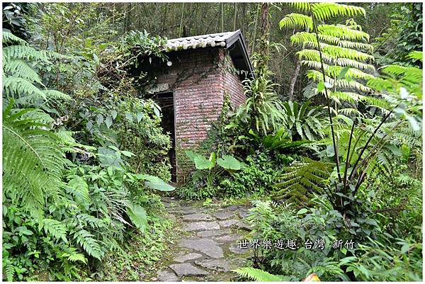 37A6號花園0035.jpg