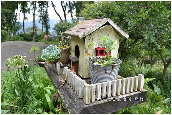 56A6號花園0067.jpg