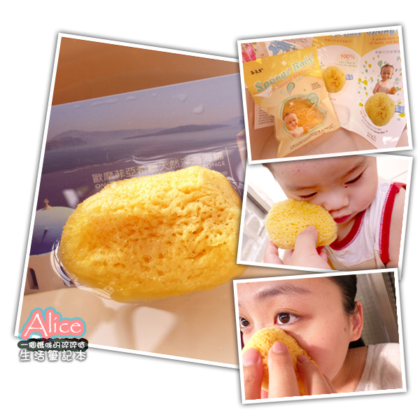 Sponge Baby 海綿寶貝 希臘天然海綿