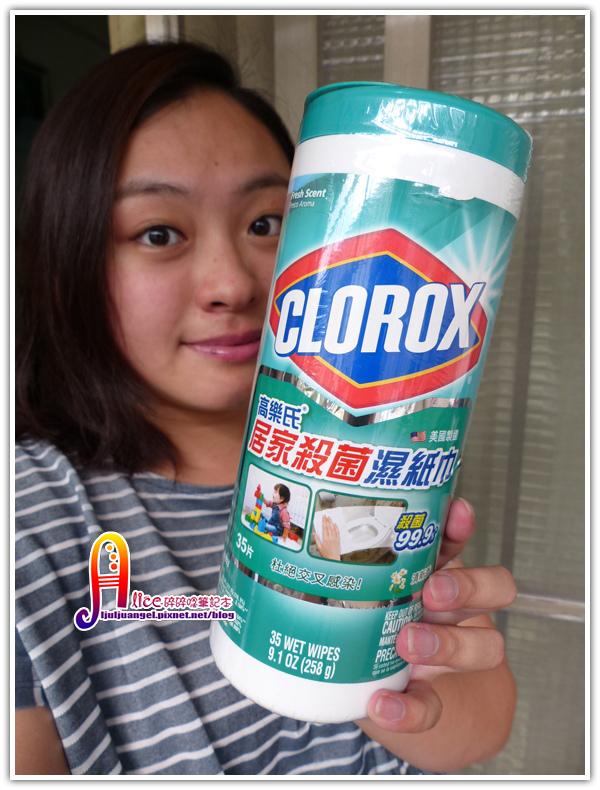 CLOROX (3).JPG