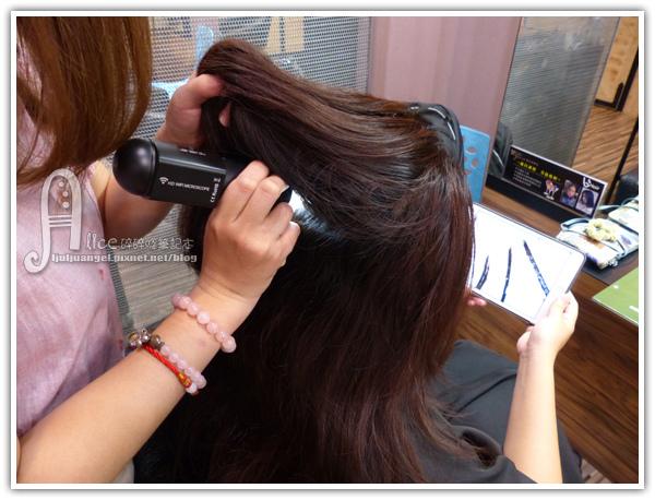 vs_hair (13).JPG