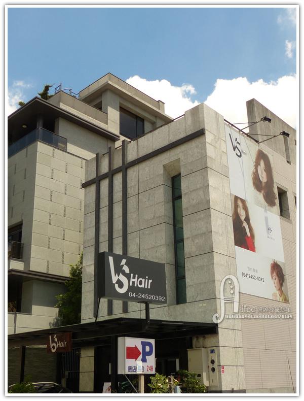 vs_hair (3).JPG