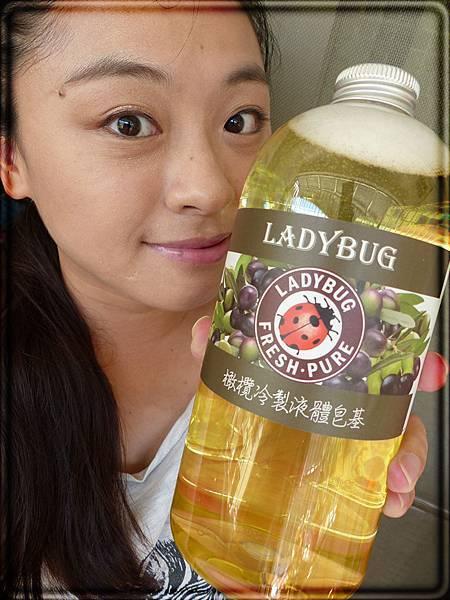 ladybug (9).JPG