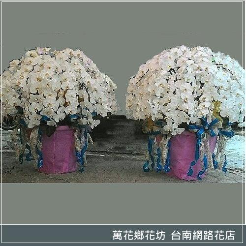 ecprod_121152_1815398_57736.jpg