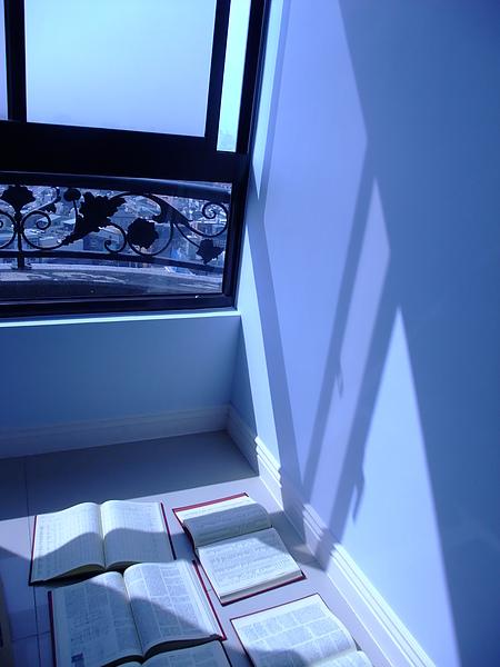 整理時,把書都拿出來曬太陽