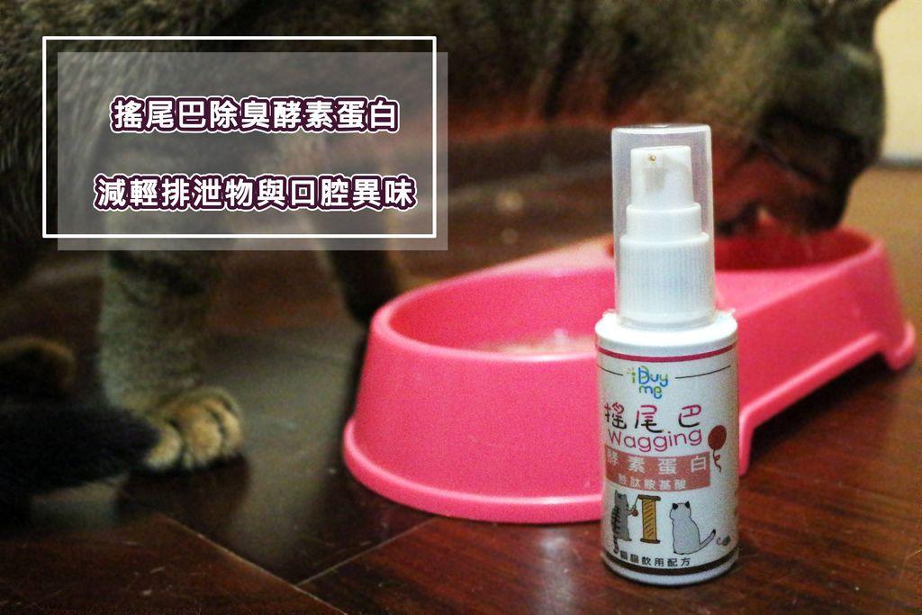 【貓咪保健】搖尾巴除臭酵素蛋白-減輕排泄物與口腔異味.jpg