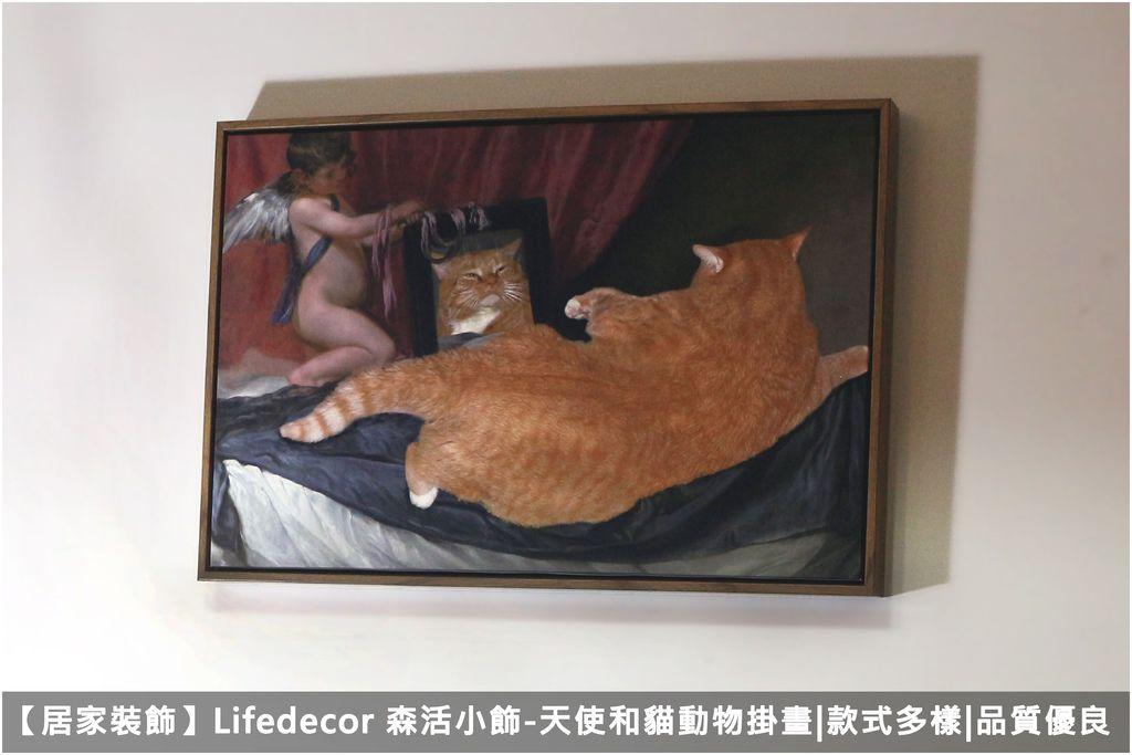 【居家裝飾】Lifedecor 森活小飾-天使和貓動物掛畫,款式多樣、品質優良.jpg