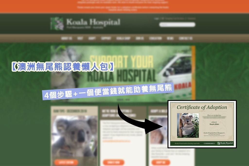 【澳洲無尾熊認養懶人包】4個步驟+一個便當錢就能助養無尾熊.jpg