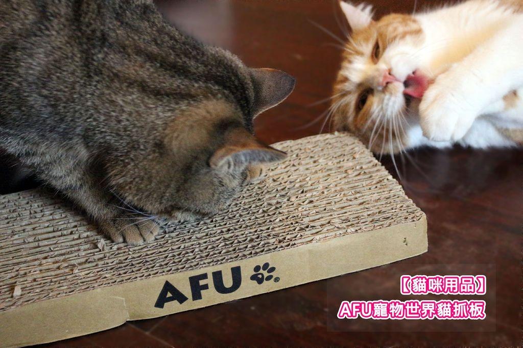 【貓咪用品】AFU寵物世界貓抓板推薦-分享便宜又耐用的貓抓板.jpg