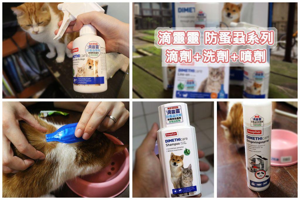 【寵物除蚤推薦】滴靈靈防蚤蝨滴劑+洗劑+噴劑-更安心的防護選擇