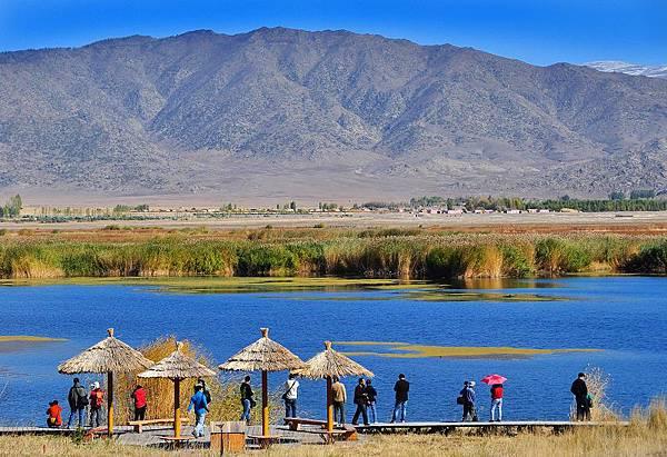 北疆秋之旅18