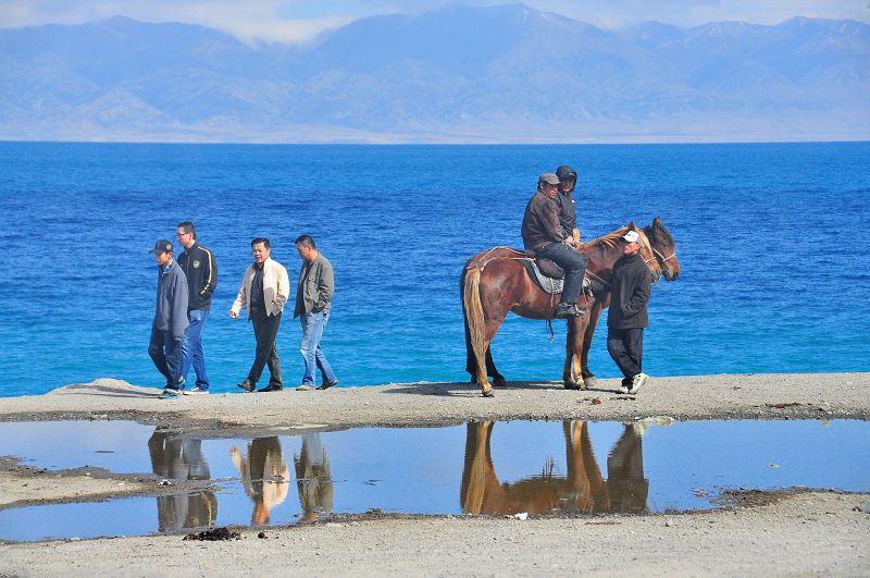 北疆秋之旅9